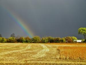 rainbow_candy_spiegel