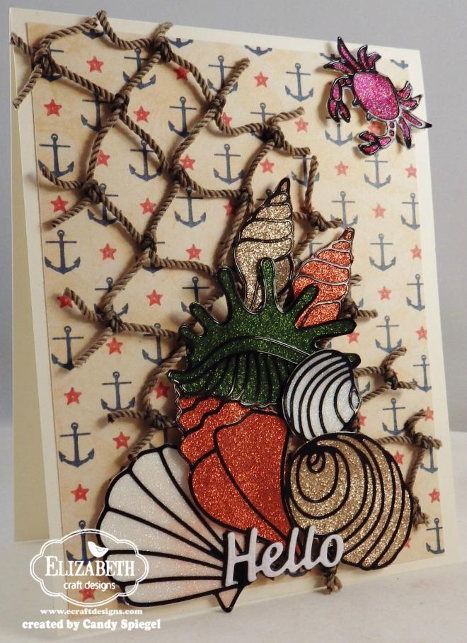 ECD_seashells_Candy_Spiegel6