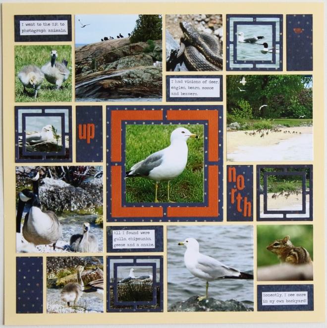 mosaic_wildlifeup